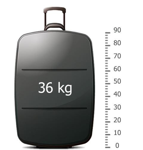 Size and Weight of Luggage - F.A.Q. | Russiantrains.com